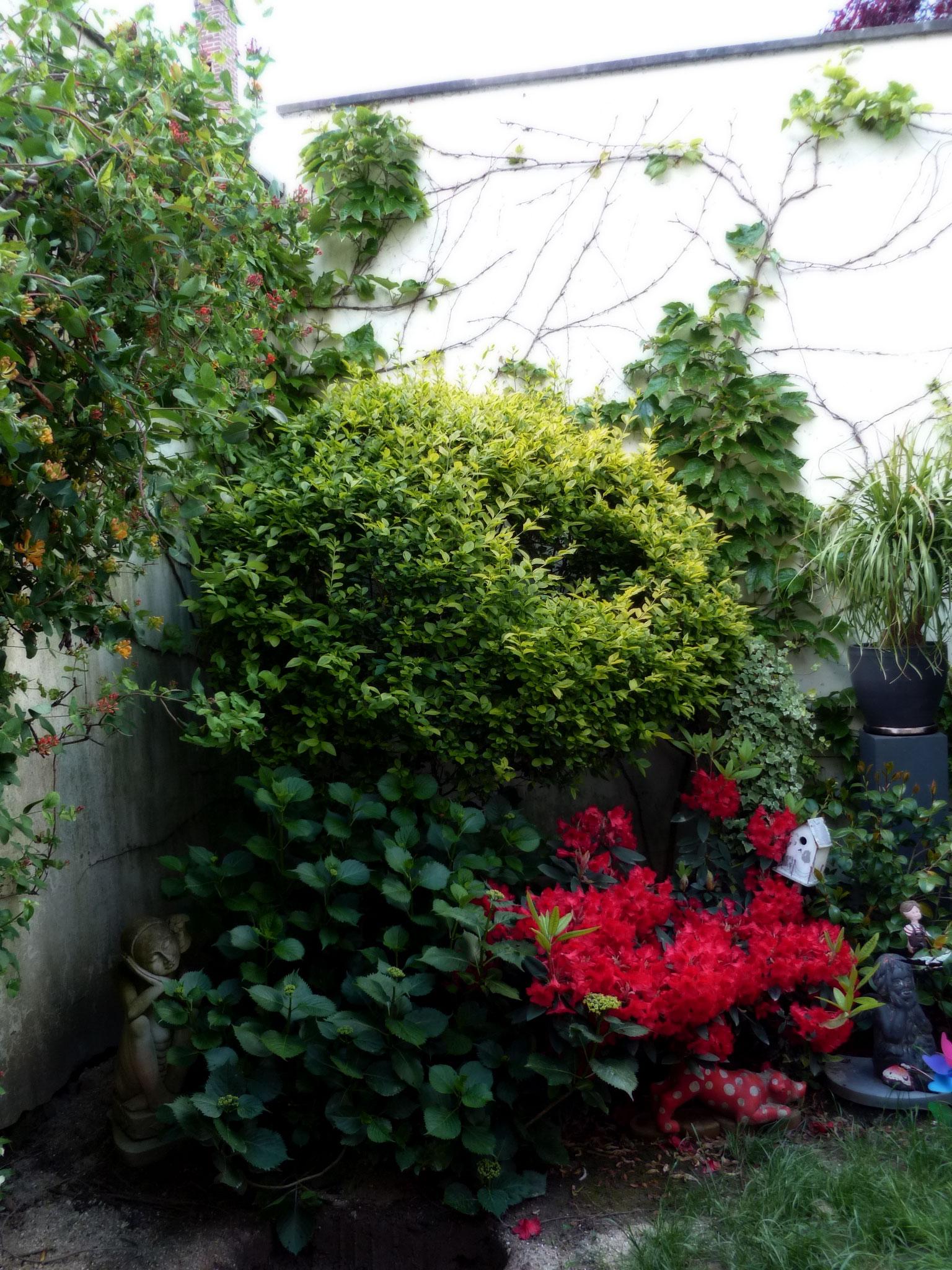 Jardin avant maison cool avant with jardin avant maison for Conseil pour le jardin